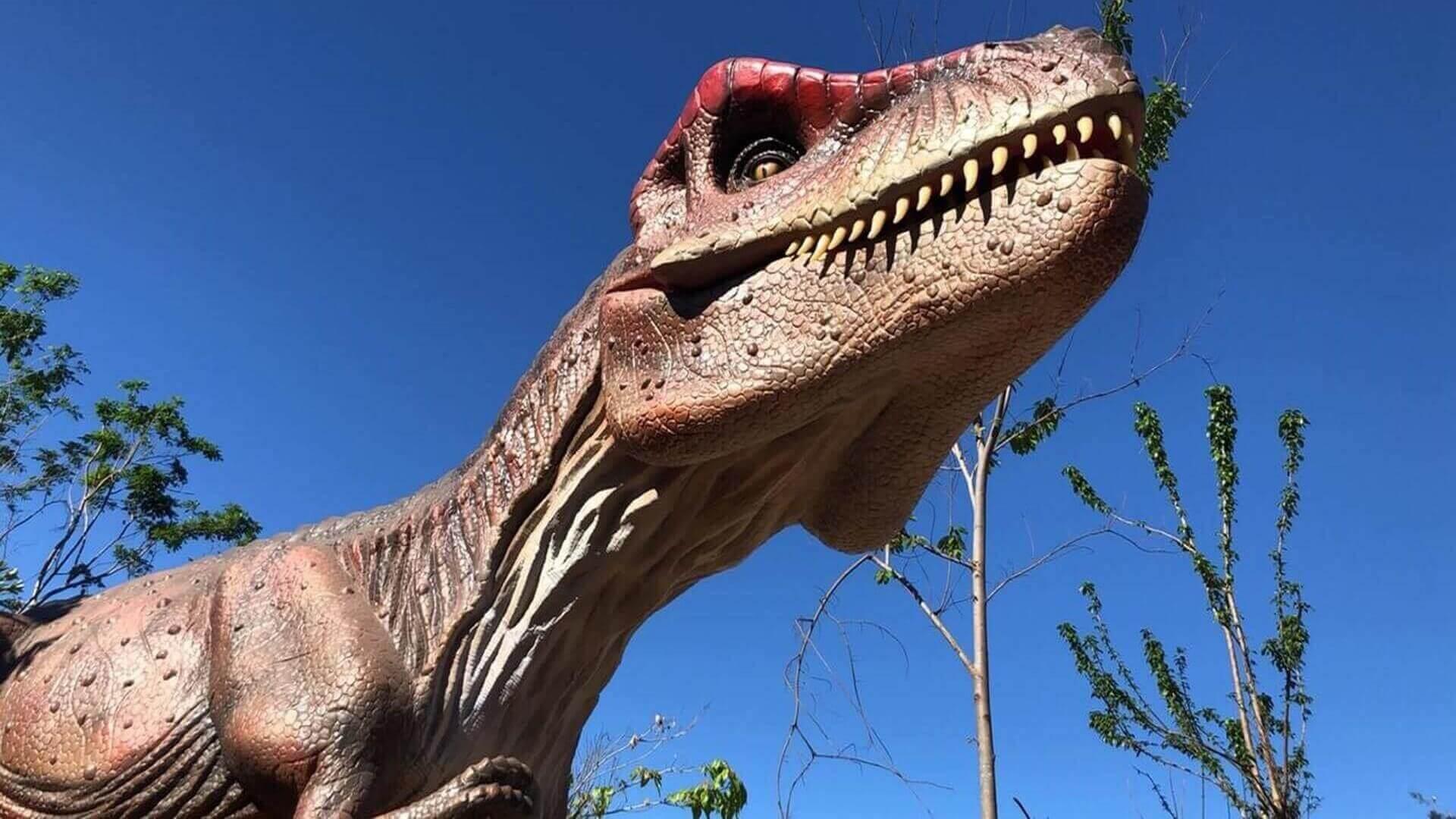 Conheça o Vale dos Dinossauros em Olímpia SP
